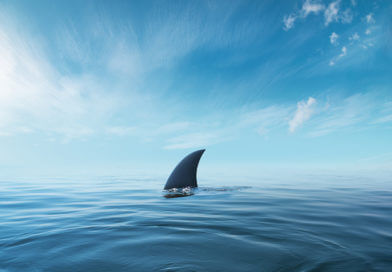 The Jaws Syndrome: Can We Go into the Water Yet?
